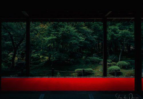 圓光寺 庭園