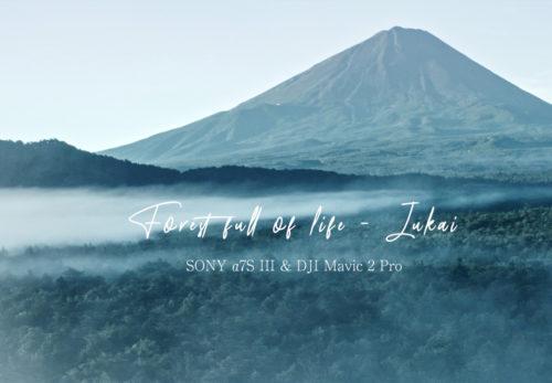 FUJI HATさまのプロモーション用動画を制作しました。
